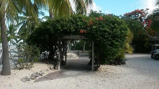 Atlantic Bay Resort: By the pool