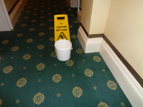 The Palace Hotel: BUCKET TO CATCH DRIPS
