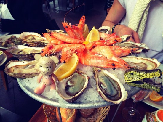 Toinou Les Fruits de Mer : This is Timy. He travel with me around the world