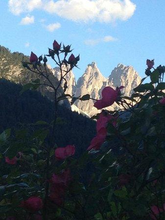 Bed and Breakfast Fra Rose e Mughi: Dolomiti