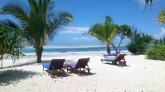 Neptune Pwani Beach Resort & Spa: Toujours des transats libres