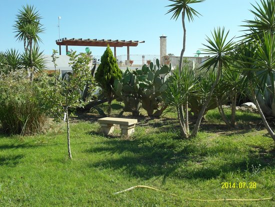 Cortile e ingresso picture of agriturismo il sorriso for Il giardino degli ulivi monteviale