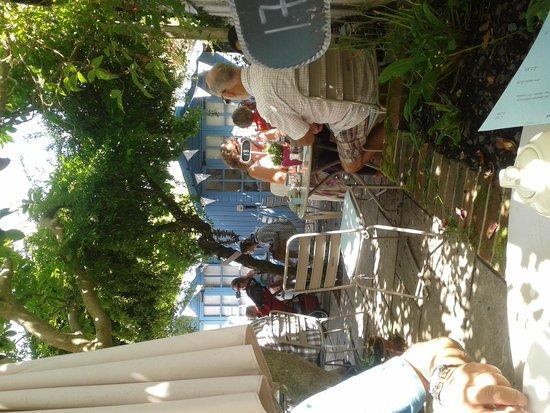 Driftwood Cafe: Courtyard garden
