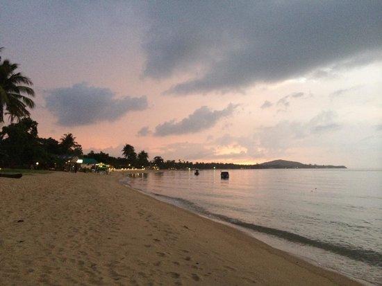 beautiful surroundings of Mae Nam beach at Nature Bar