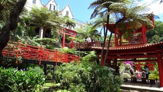 Monte Palace Tropical Garden : Beautiful gardens, full of colour