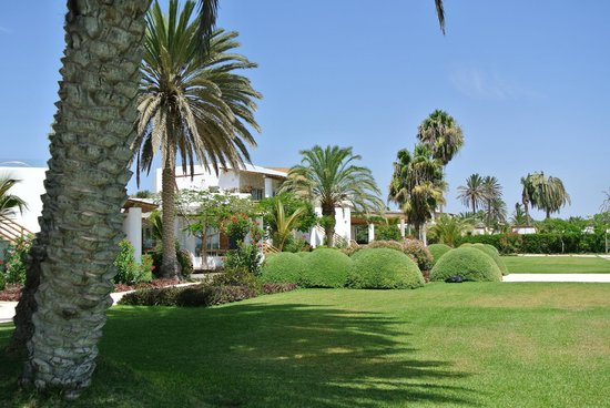 Hotel Paracas, A Luxury Collection Resort, Paracas: In the hotel garden