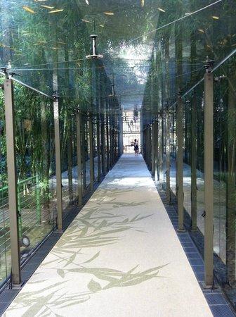 NH Torino Lingotto Congress : Verrière d'accès aux chambres