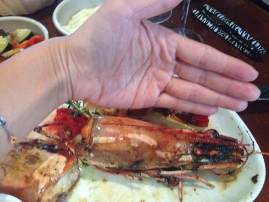 La Brasserie Bordelaise: Just the head was as big as a palm size !