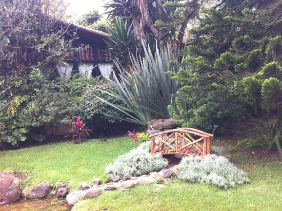 Nuestra caba a picture of monteverde hotel de cabanas for Cabanas en mexico