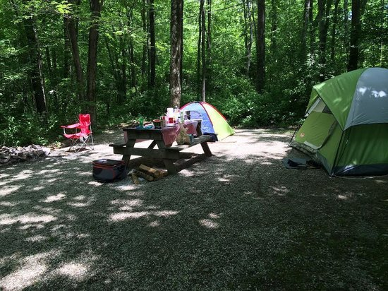 Camp Taylor: Our set up in Site #3