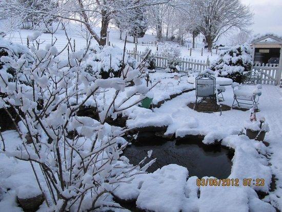 Big Locust Farm Bed and Breakfast: beautiful snowfall