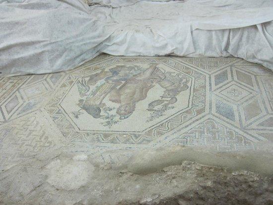 Museo Archeologico Nazionale Antiquarium Turritano: Mosaic Floors