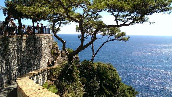 Capri 2019 Best Of Capri Italy Tourism Tripadvisor