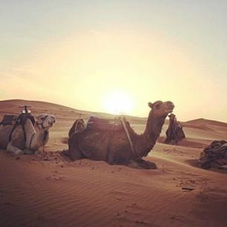 Riad Verus: desert