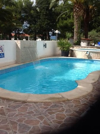 Hotel Villa Adriatica: The pool