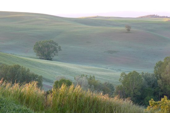 Agriturismo Poderino : Paesaggio Circostante