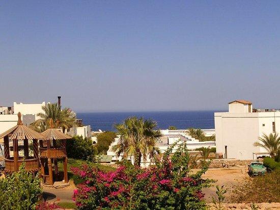 Poinciana Sharm Resort & Apartments : View from villa 409