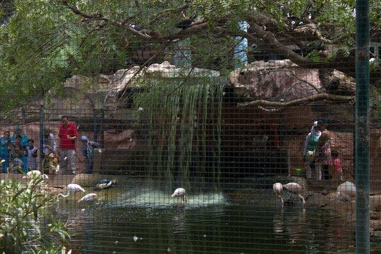 Vallee des Oiseaux