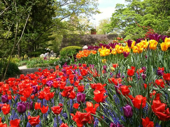 our town new york tours the shakespeare garden in central park - Shakespeare Garden Central Park