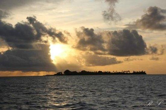 Maldive Due Palme: KEYODHOO