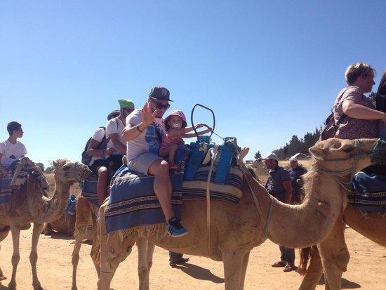 Hotel Paradis Palace : Ballade  chameau