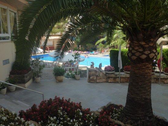 Hotel Pinero Tal: Piscine