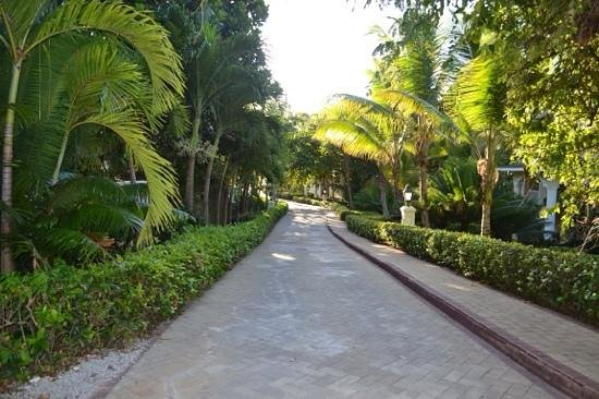 Luxury Bahia Principe Cayo Levantado Don Pablo Collection : One of the paths around the island