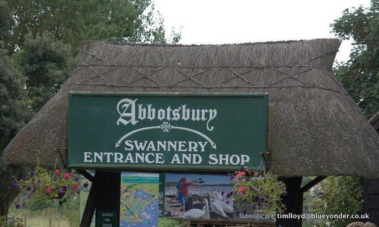 Abbotsbury Swannery: Entrance to the Swannery