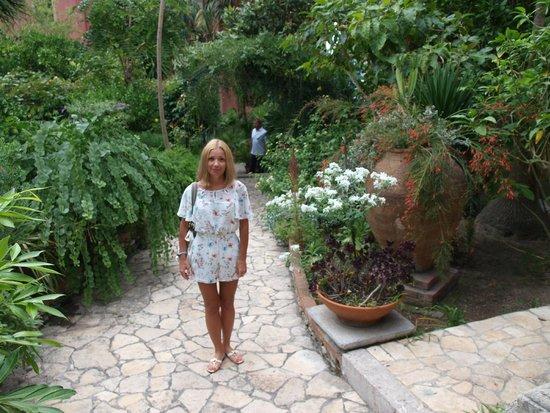 Hotel Villa Schuler: Сад отеля