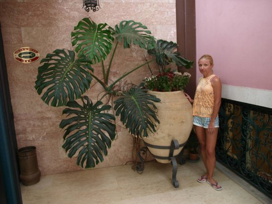 Hotel Villa Schuler: В лобби отеля