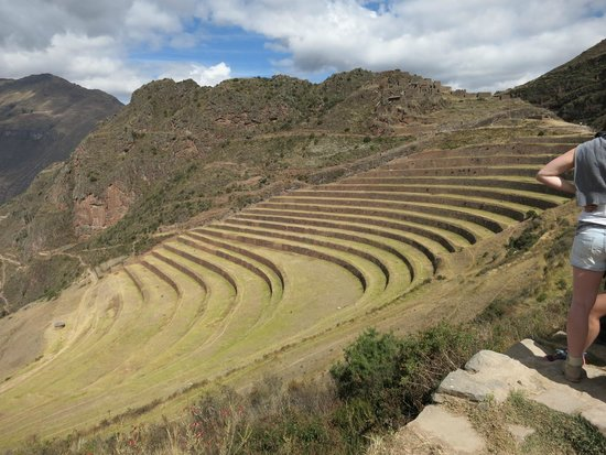Pisac: lower terraces - Pisaq