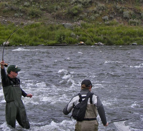 Arrick's Fly Shop and Fly Fishing Tours: Fishing the Madison River