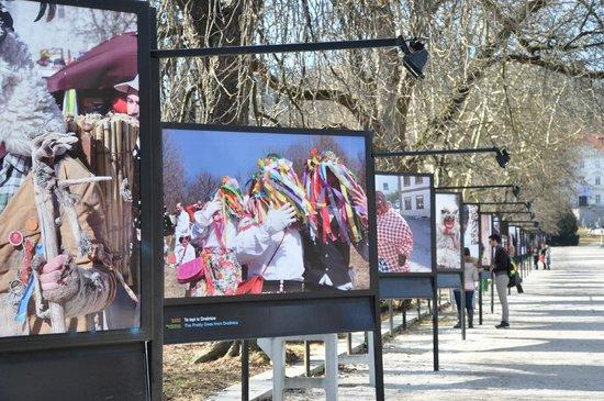 Tivoli Park: lovlely exhibition