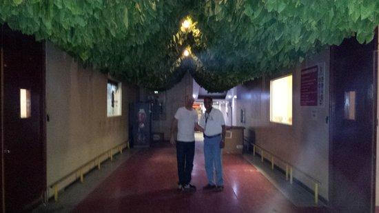 La Aurora Cigar Factory: Entrada a la fabrica