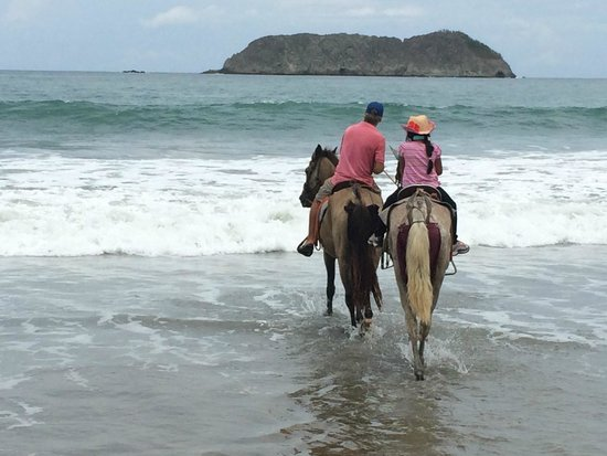 Arenas del Mar Beachfront & Rainforest Resort : Loved the horseback riding experience by the beach!
