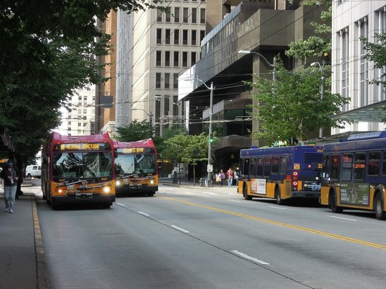 Crowne Plaza Seattle Downtown Area: Buses on 3rd Avenue can get you anywhere!