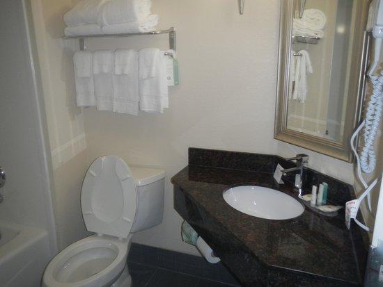 Comfort Inn Downtown Charleston: bathroom