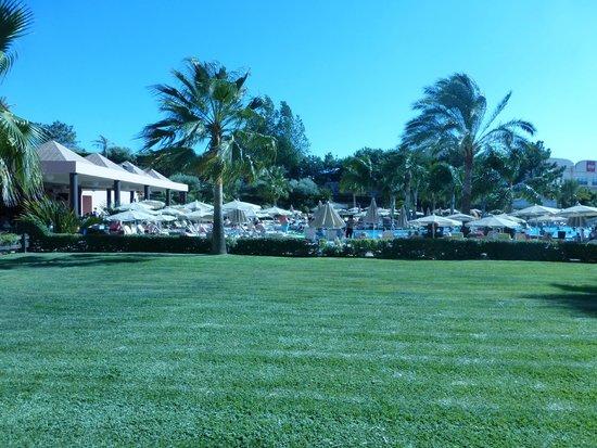 ClubHotel Riu Guarana: Área de piscina