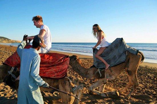 Cli Surf Morocco: camel ride so much fun