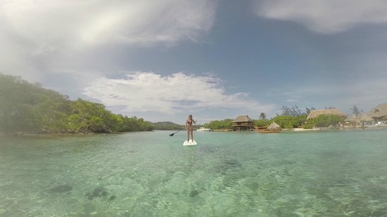 Little French Key: Paddleboarding