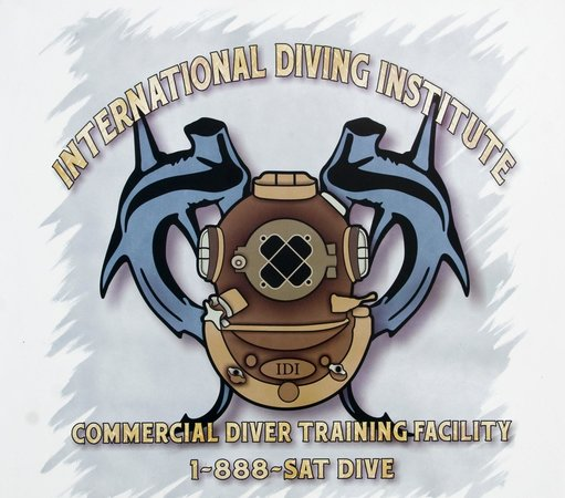 International Diving Institute - Day Courses