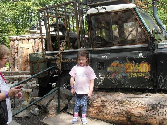 Dino Park: Gotcha