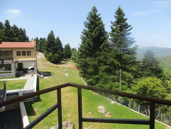 Natura Vytina Hotel : Από το δωμάτιο μας