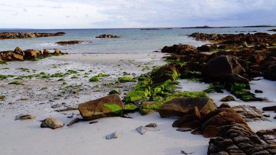 Sea-side B and B: Atlantic Ocean