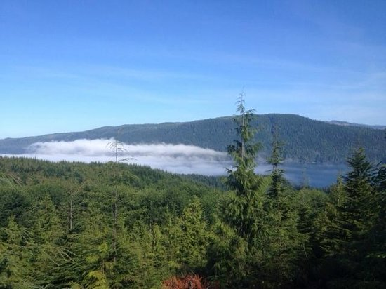 Soule Creek Lodge: Morning from deck
