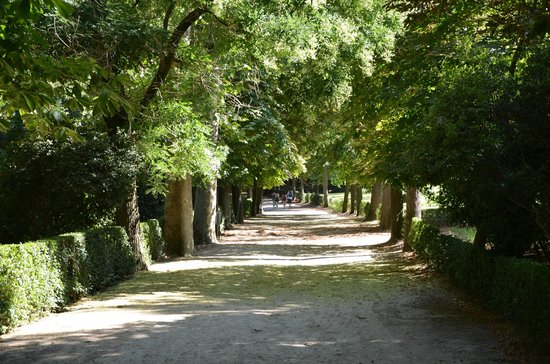 Parque del Retiro: απο τα αμετρητα δρομακια της