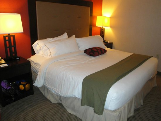 Holiday Inn Express Hotel & Suites Washington DC-Northeast: King Bedroom