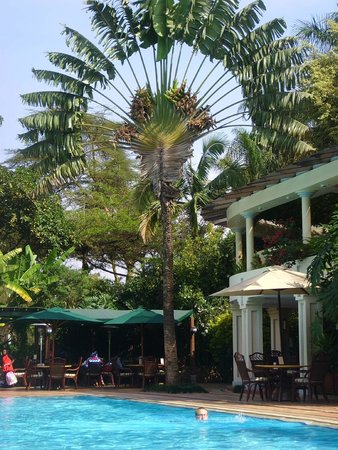 Nairobi Serena Hotel : Pool