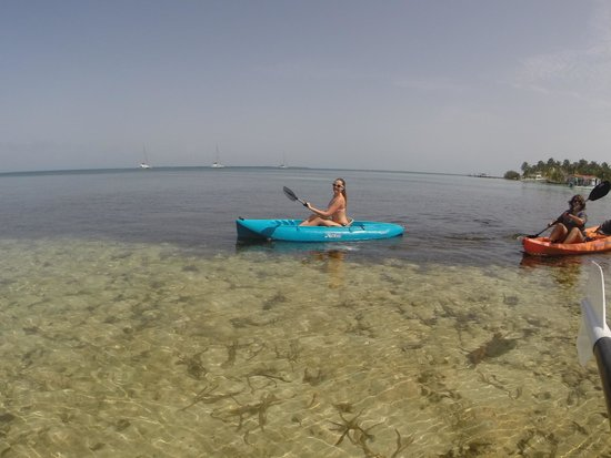 Pelican Beach - South Water Caye: Love the free Kayaks