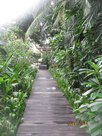 Chongfah Beach Resort: wEG ZU DEN zIMMERN